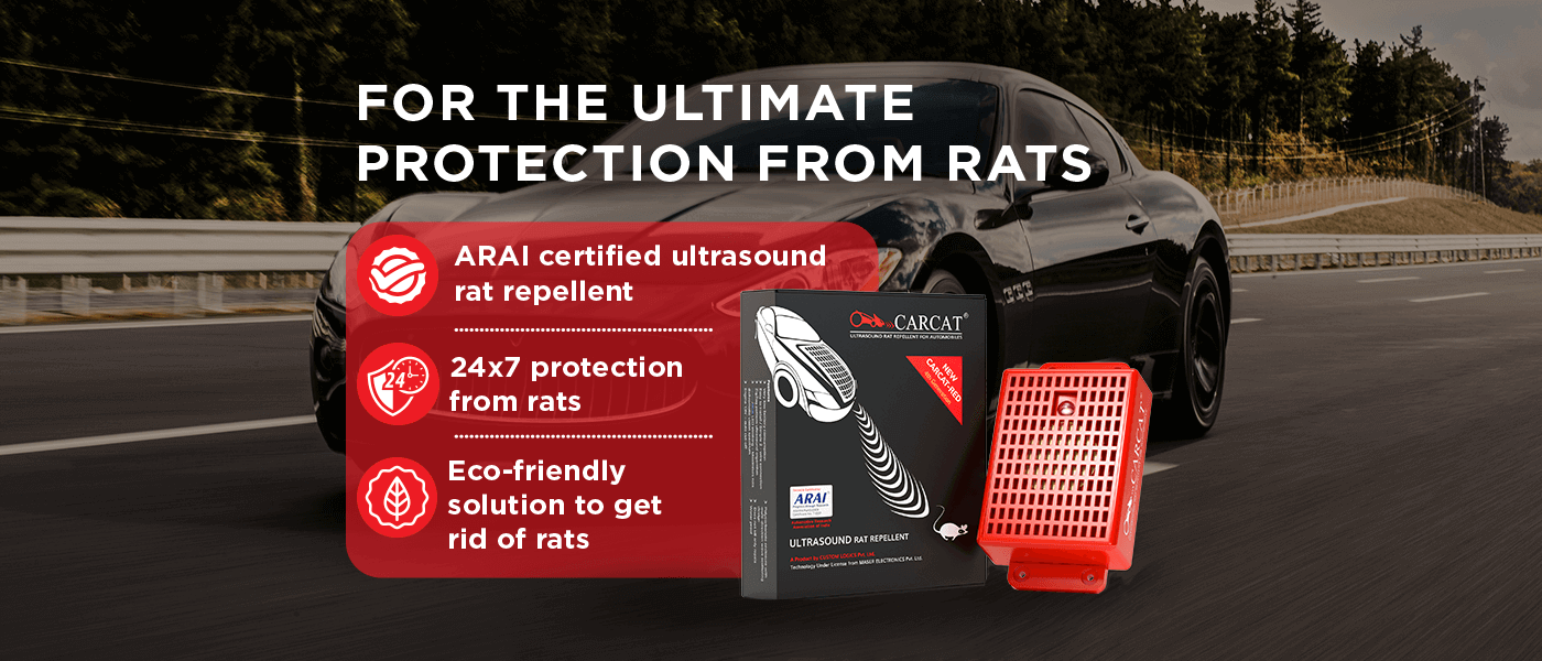 For the ultimate protection from rats