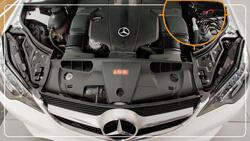 Mercedes|